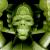 David Flores x HellFire Canyon Club x BlackBook Toy:Kiss My Ass Army edition