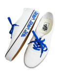 VANS (Sketch Sidewall) true white/victoria blue