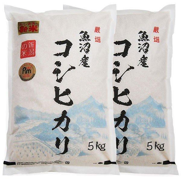 魚沼産コシヒカリ 令和3年度産 10kg (5kg × 2袋) H