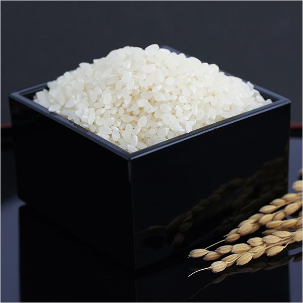コシヒカリ 米粒