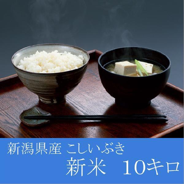 予約 新潟県産 こしいぶき 10kg(5Kg×2)