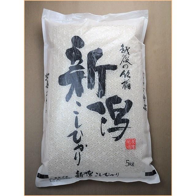 29年度産 新米 新潟産コシヒカリ 10kg (5キロ×2袋=10キロ)