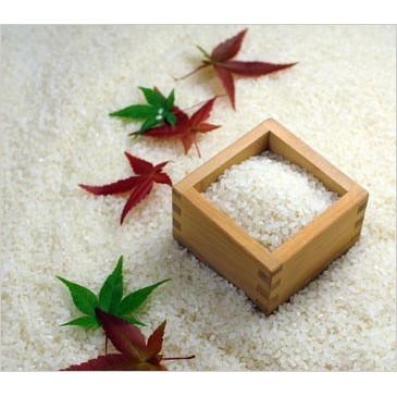 新潟県 魚沼産 こしひかり 米