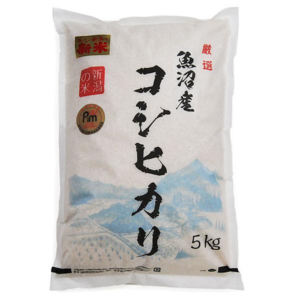 魚沼産コシヒカリ  令和元年度産 一等米 5キロ