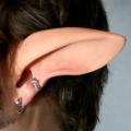 エルフ耳◆Faun Ears ケンタウロスの耳~エルフ