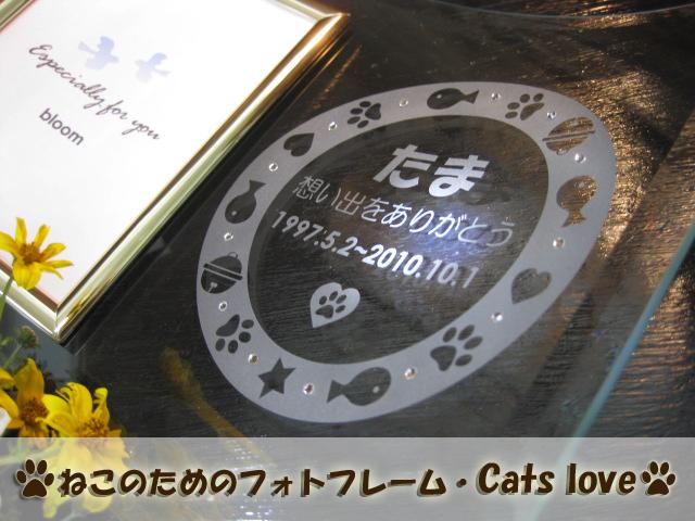ペットメモリアル・ねこのためのフォトフレーム・cats love