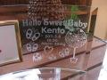 出産祝い用ガラスの名入れフォトフレーム【てんとう虫と蝶々】・スワロフスキークリスタル付き