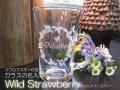 スワロフスキー付きガラスの名入りマグカップ・WildStrawberry