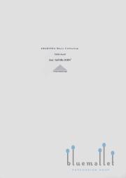 Hollo , Aurel - Jose / beFORe JOHN5 (スコア・パート譜セット)
