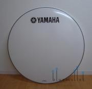 "Yamaha Head Smoothwhite 36"" CBH-36 【お取り寄せ商品】"