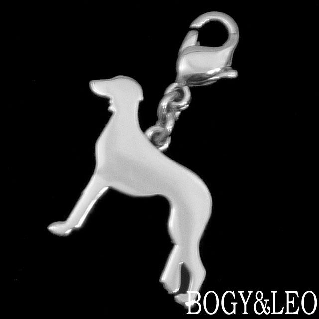 世界一の犬 サルーキー