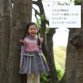 \ジャストサイズアイテム10%OFF SALE/【427】Souris(スーリー)コットン タートル ブルー 110 ピンク 110 ラベンダー 110 130/定価\3,960