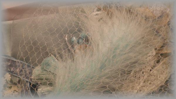 アクアブルーのメルスリーセット