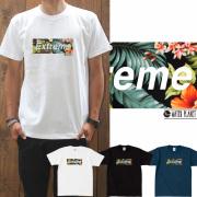 半袖 Tシャツメンズ【EXTREME/prd048】【Tシャツパラダイス・2p5000円送無】BOXロゴ【メール便送料無料】通販 楽天カード分割/05P03Dec16