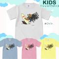 【キッズTシャツパラダイス・2枚で送無】【CRboard/prd007ks】【メール便OK】子供服/男の子/女の子/半袖 Tシャツ
