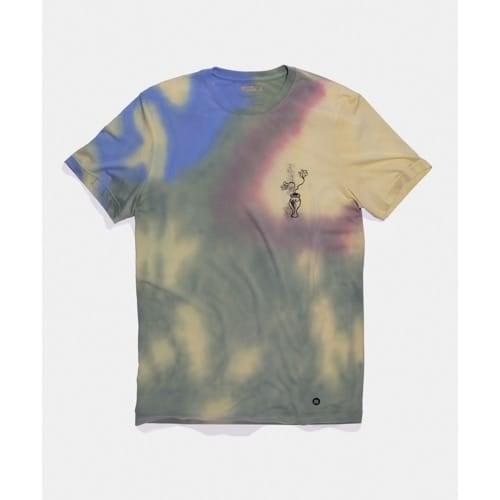 スタンス STANCE SOME HAVE TWO T MULTI メンズ レディース Tシャツ DrSeuss ドクター スース A2SS1A20SO-MUL