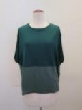 ロジェ(ROSIER),テンセルキュプラローゲージ丸首カラーコントラスト半袖Tシャツ:フォーレストグリーン