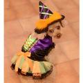 HalloweenWitchCostume_1.jpg