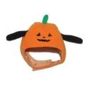 pumpkinhat.jpg
