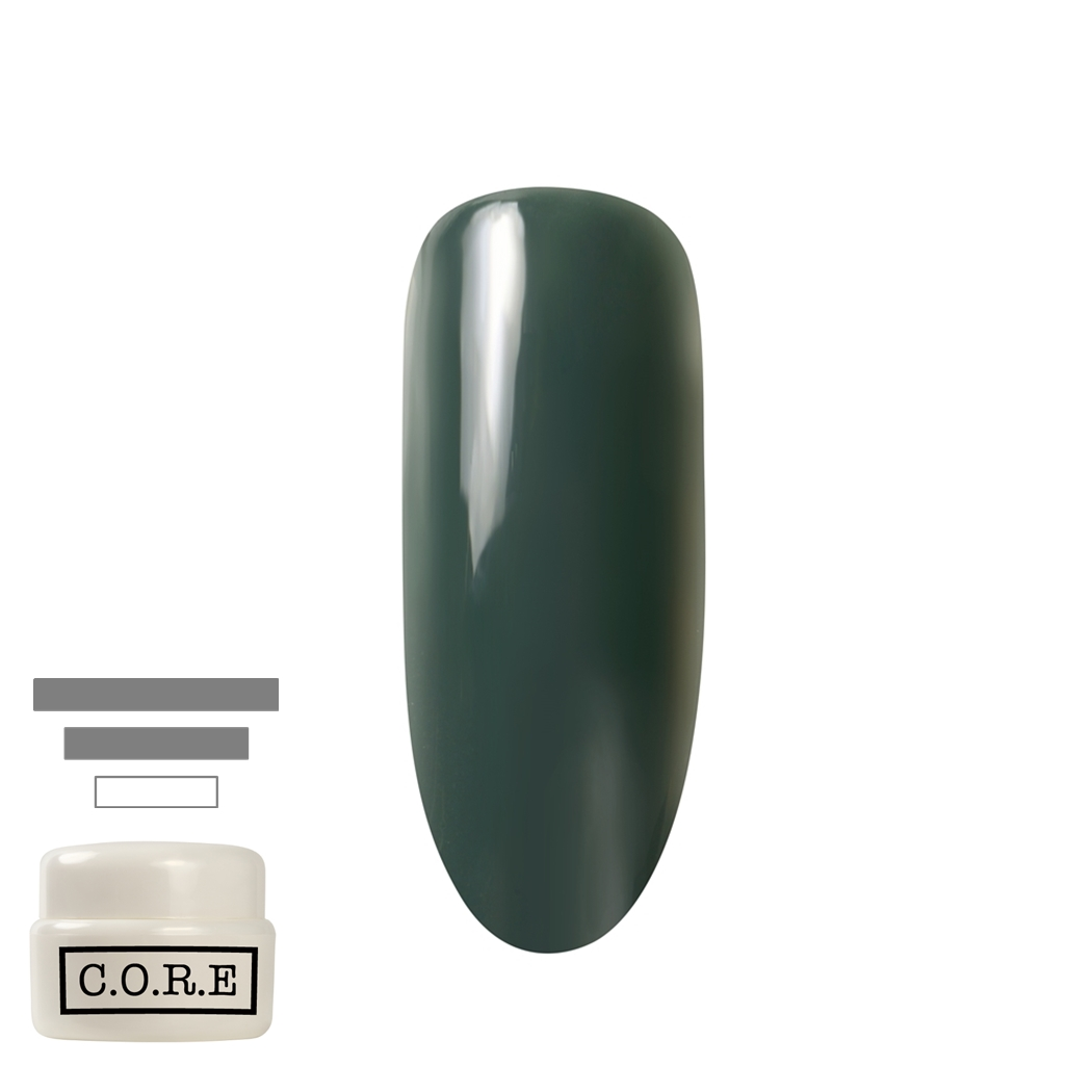 CORE コアジェル C013 サファリ 5g