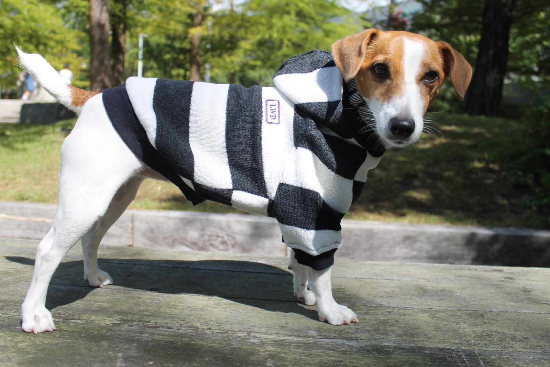 <犬と生活>20%OFF!ニット地の太目ボーダー柄 ボーダーパーカー4号