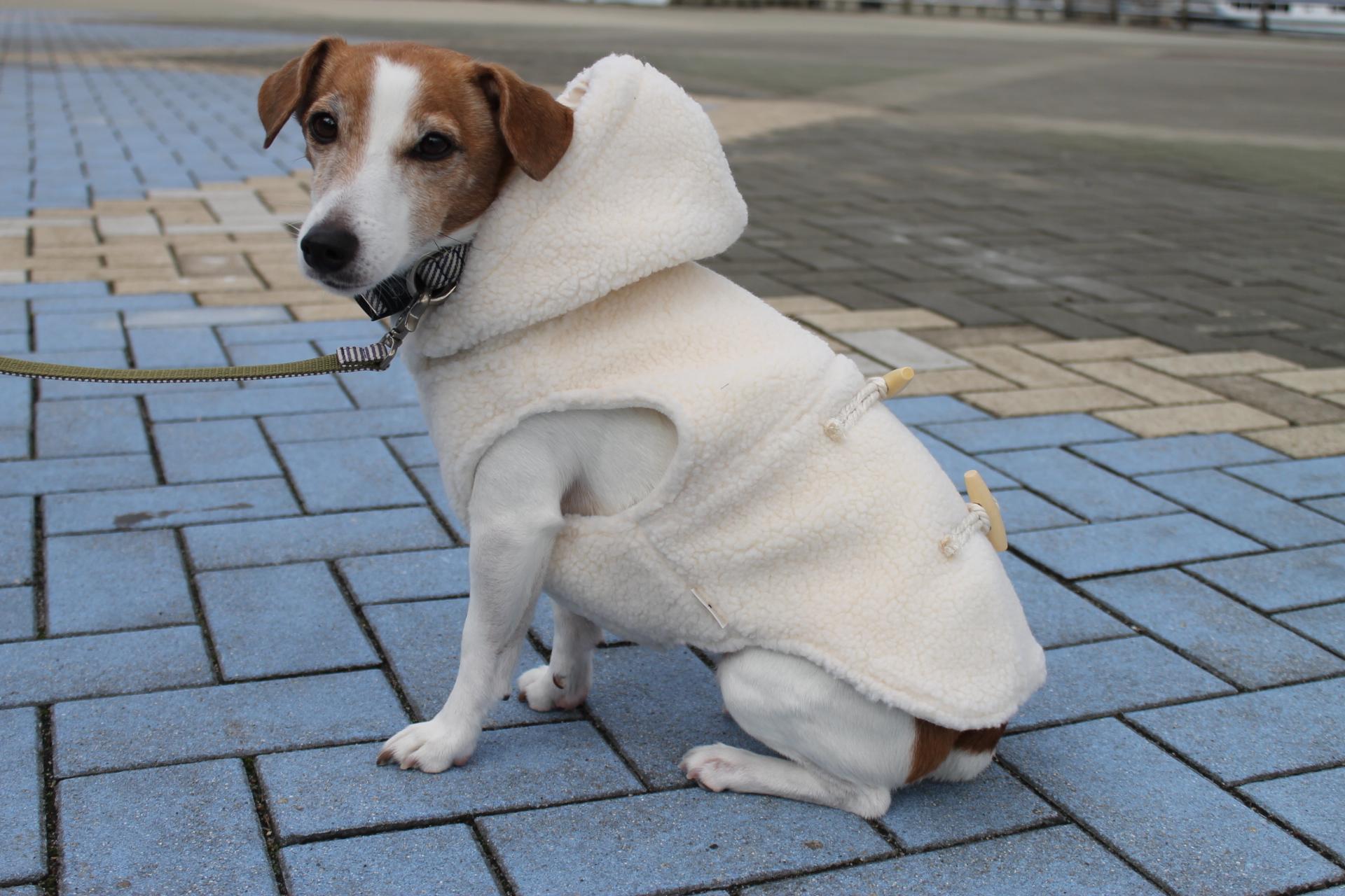 <犬と生活>もこもこ、あったか!ボアダッフル(ハーネス対応)