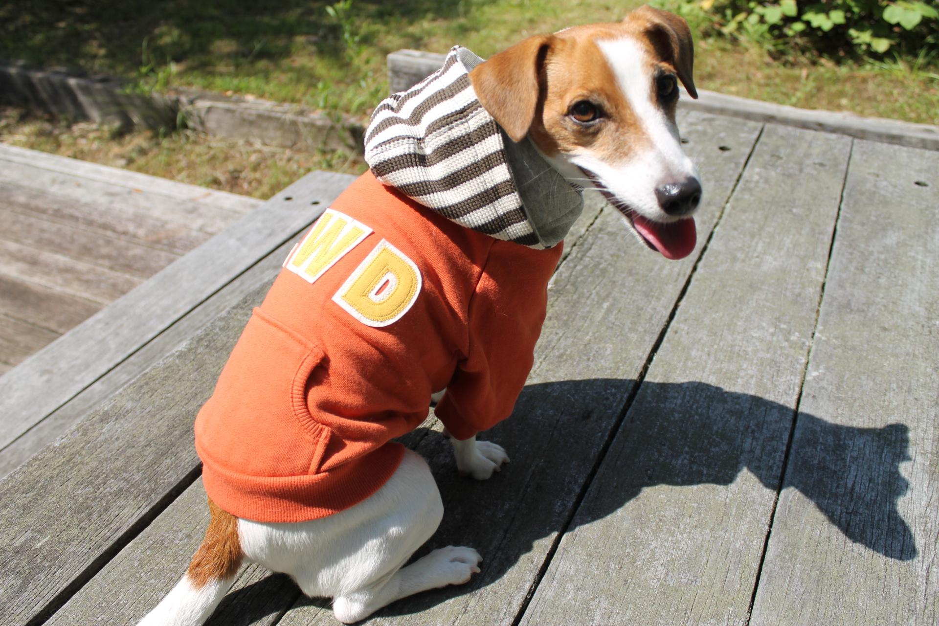 <犬と生活>アメカジ風のアップリケがオシャレ カレッジパーカー 5号
