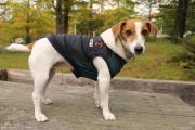 <犬と生活>MA−1風デザインがカッコよくて暖かい!ウォームMA-1パーカー 4号