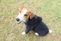 <犬と生活>フードのポンポンが可愛い! 編み立てニットパーカー 4号