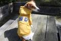 <犬と生活>20%OFF!フェルトロゴがお洒落なカレッジパーカーLWD 5号
