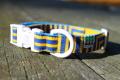 <堀商店>スウェーデン国旗のような色合いのカラー(Kidstripe Collar)
