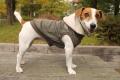 <犬と生活>MA−1風デザインがカッコよくて暖かい!ウォームMA-1パーカー 5号(無料お名前刺繍入れ可)