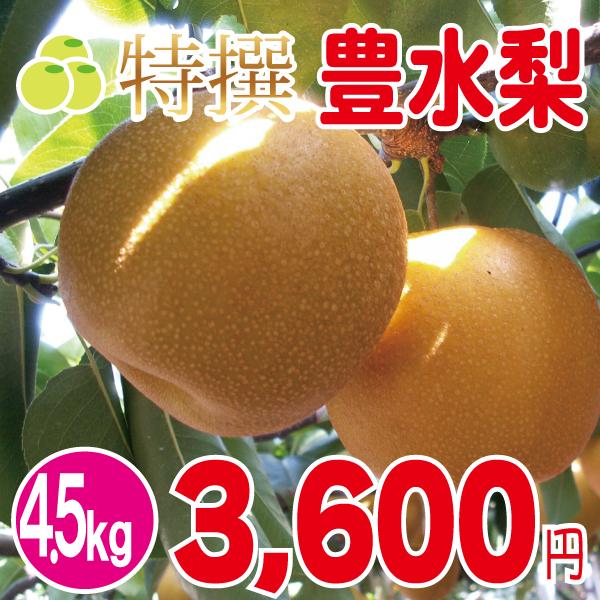 豊水梨4.5kg
