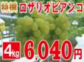 特撰ロザリオビアンコ4kg 【発送期間】9月上旬〜下旬