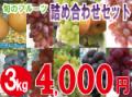 旬のフルーツ詰め合わせセット3kg 【発送期間】8月下旬〜10月上旬ごろ