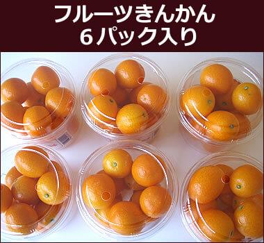 フルーツきんかん6パック