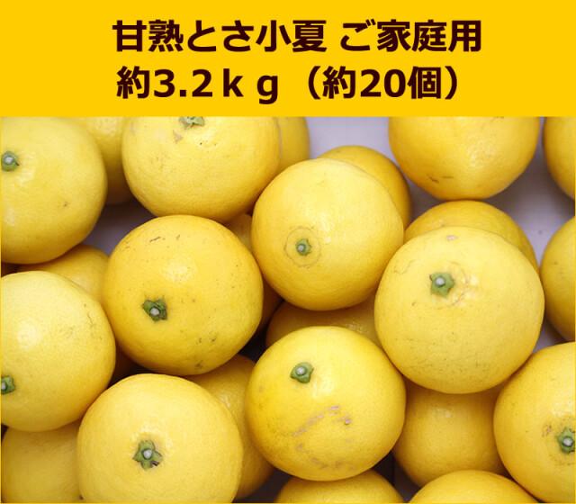 甘熟土佐小夏ご家庭用約3.2kg