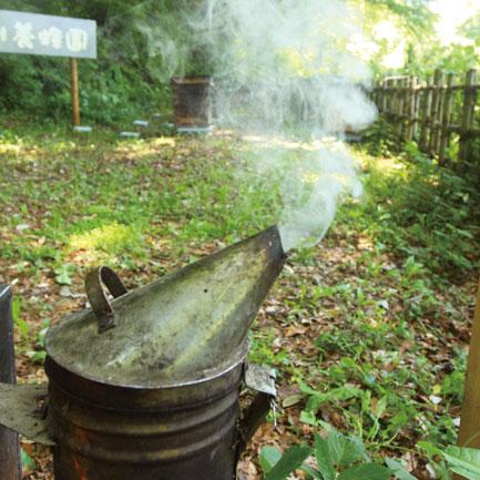 s_国産養蜂、噴煙器イメージ