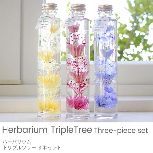 【ハーバリウム】Triple tree 3本セット