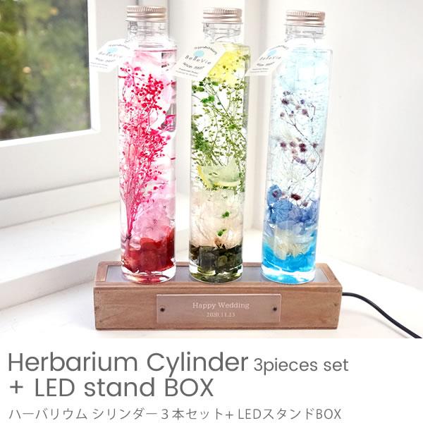 ハーバリウムシリンダー3本セット + LEDスタンドBOX