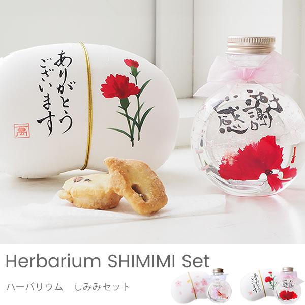 【ハーバリウム】ハーバリウム しみみセット