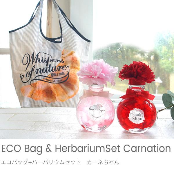 エコバッグ+ハーバリウムセット カーネちゃん
