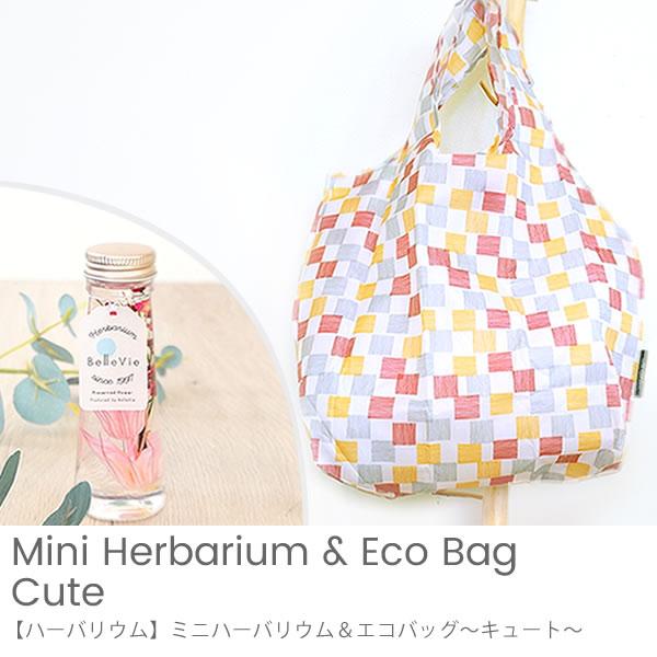 【ハーバリウム】ミニハーバリウム&エコバッグ~キュート~