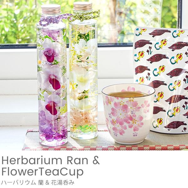 ハーバリウム蘭+花湯呑みセット