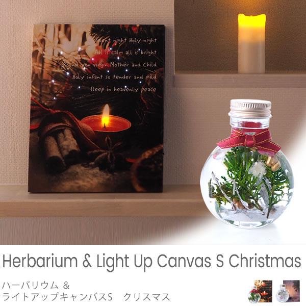 ハーバリウム&ライトアップキャンバス S クリスマス