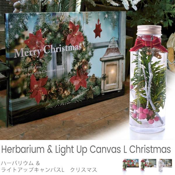 ハーバリウム&ライトアップキャンバス L クリスマス