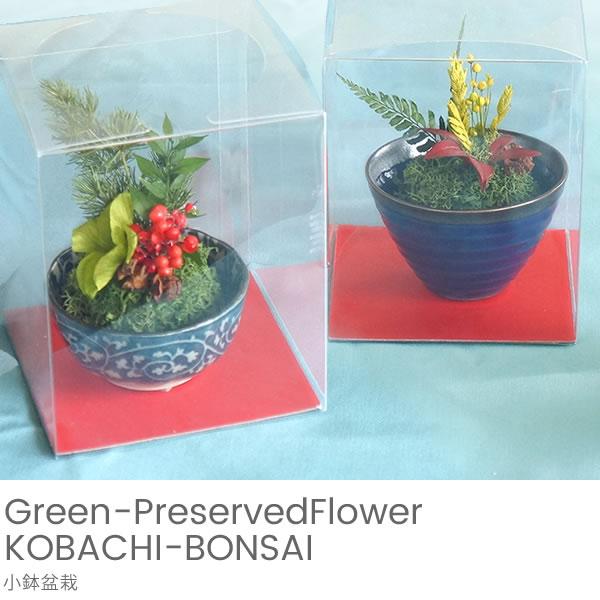 グリーンプリザーブドフラワー 小鉢盆栽