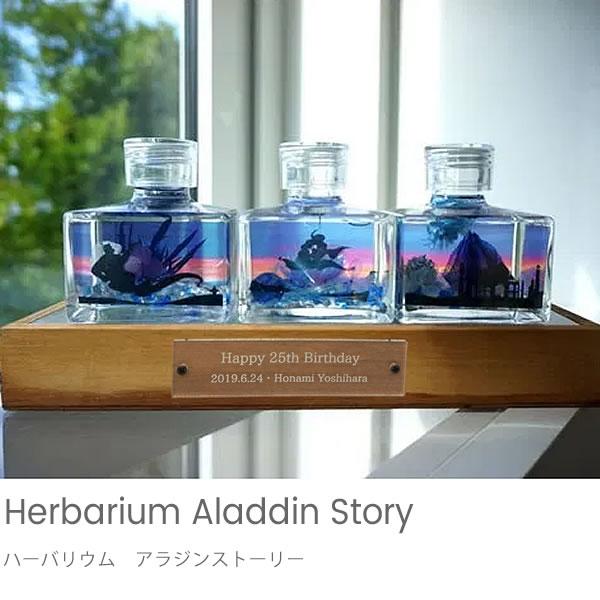 ハーバリウム アラジンストーリー + LEDスタンドBOX
