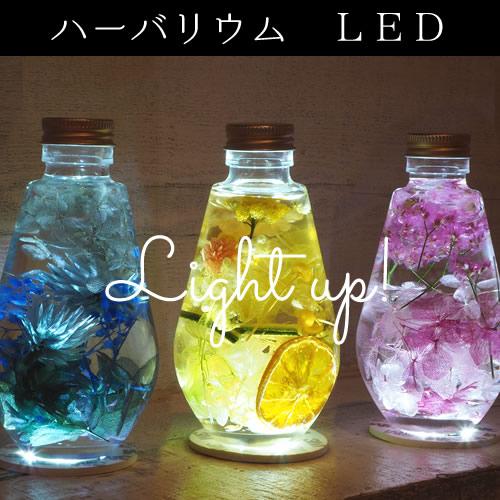 【オプション】ハーバリウム LED