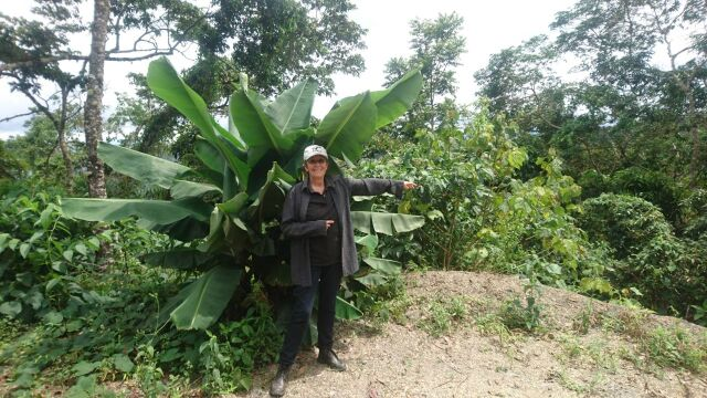 【数量限定】ボリビア コパカバーナ農園ジャバ 500g
